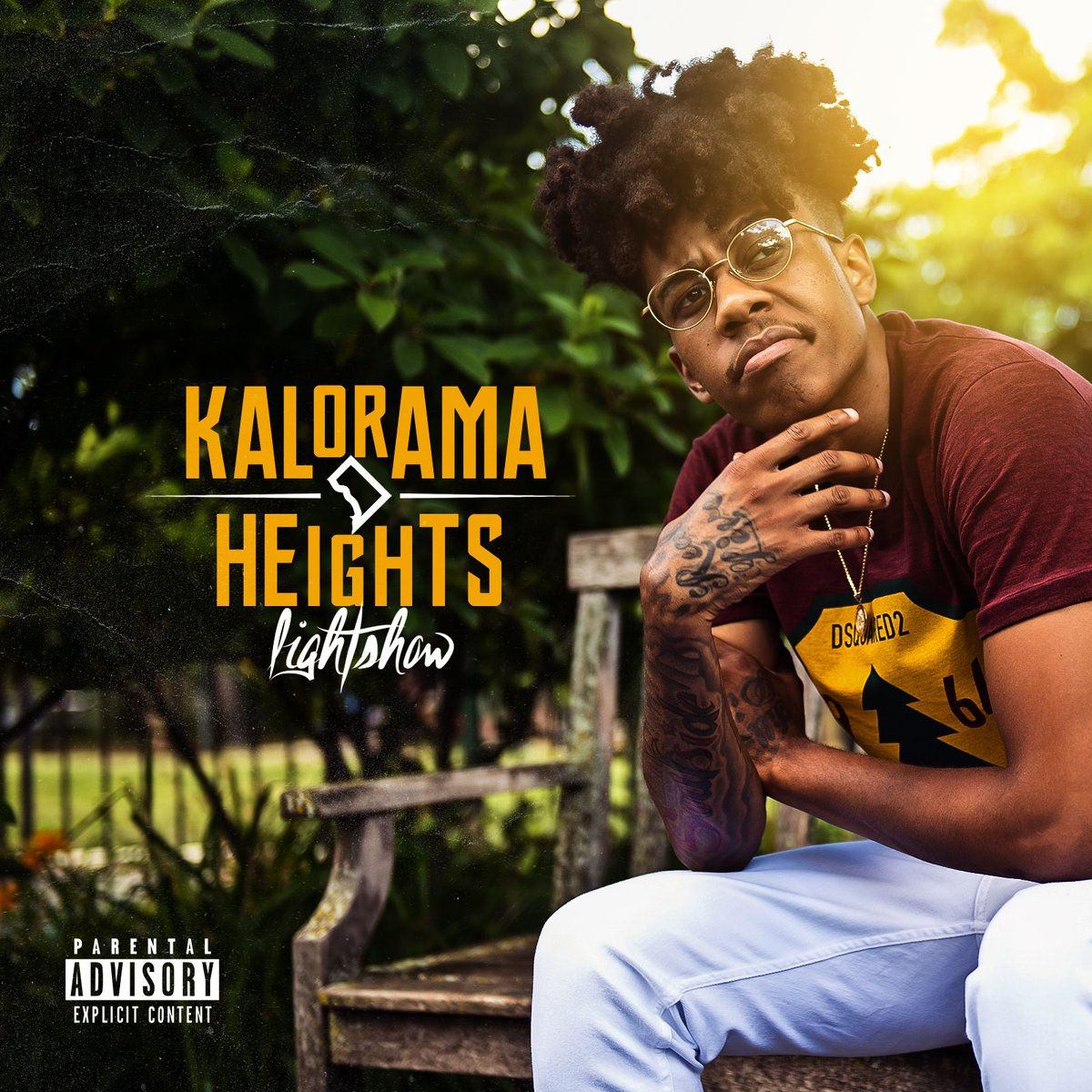 lightshow kalorama heights