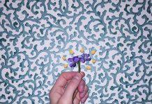 charlie burg one violet