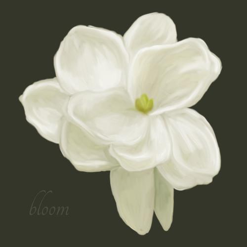 okoro bloom