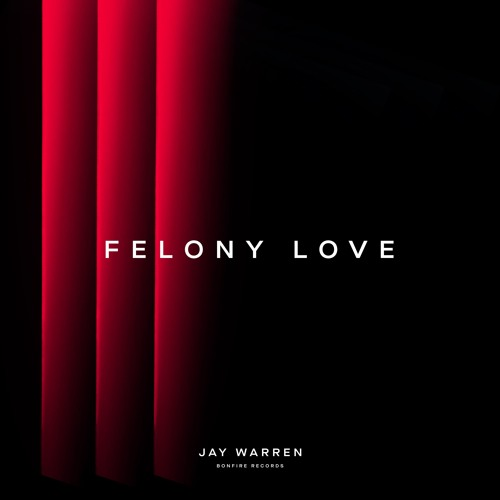 Jay Warren Felony Love
