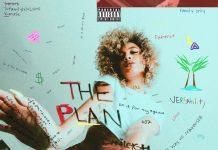 danileigh the plan