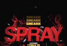 sneakk spray
