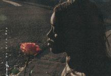arin ray roses