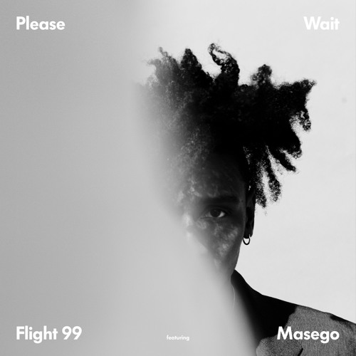 please wait flight 99