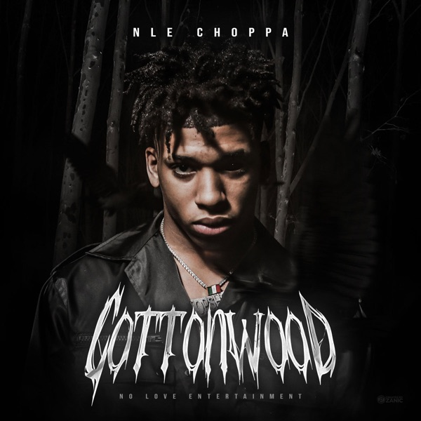 nle choppa cottonwood