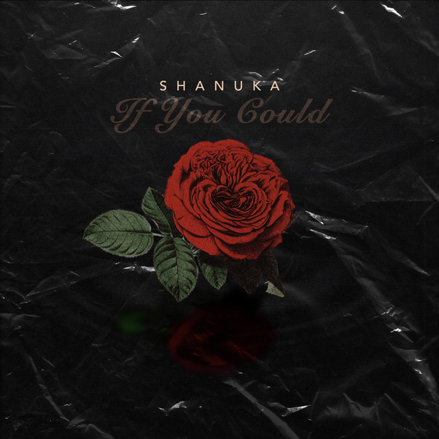 shanuka if you could