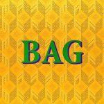 Fame School Bag