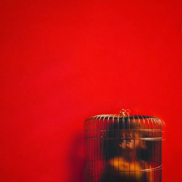 aviary act 2