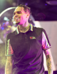 chris brown 2016